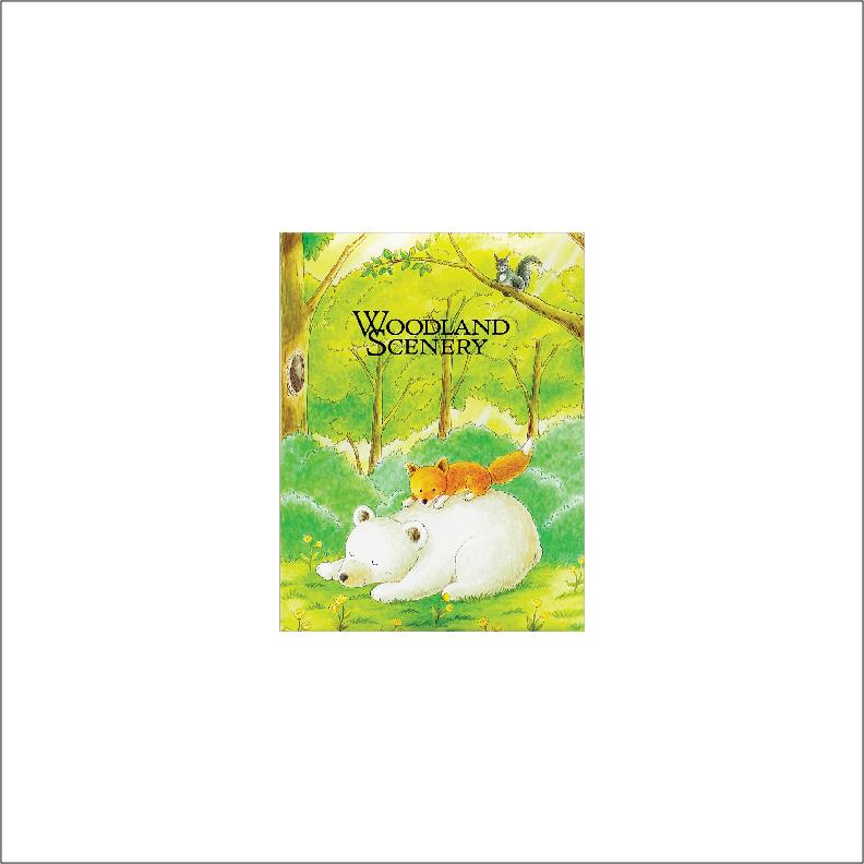NCL 4R Minimax Photo Album / Photo Book (100 pockets)